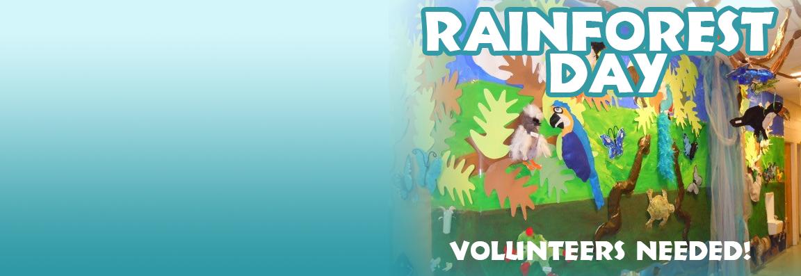 slider-rainforest-day