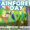 Volunteers Needed for 1st Grade Rainforest Day!